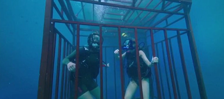 Film review 47 meters down - Cage dive streaming ita ...